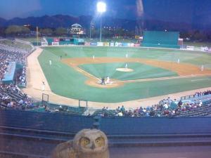 I've Got My Eye On You... (photo courtesy of Tucson Padres Facebook page)
